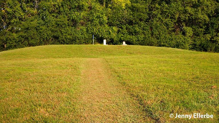 Poverty Point Mound D